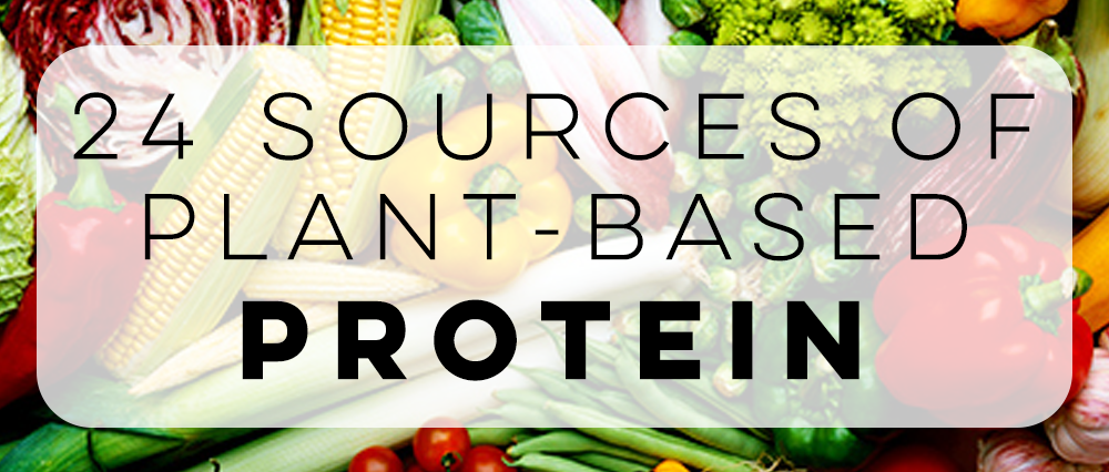 24 Sources of Plant Based Protein